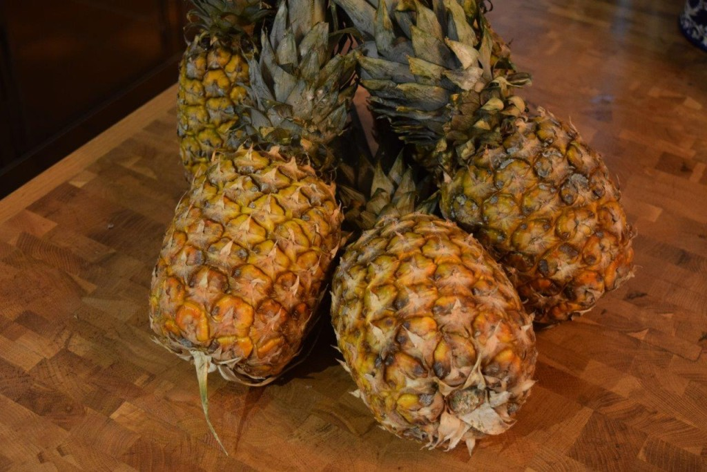 Pineapples destined for the most delightful sorbetto